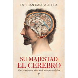 Su majestad el cerebro